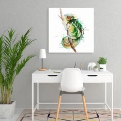 Canvas 24 x 24 - Watercolor chameleon