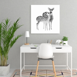 Canvas 24 x 24 - Fawns love