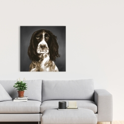 Canvas 24 x 24 - Brown english springer spaniel