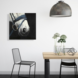 Canvas 24 x 24 - Horse with harness