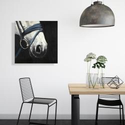 Toile 24 x 24 - Cheval avec harnais d'attelage