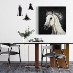 Canvas 24 x 24 - White star horse