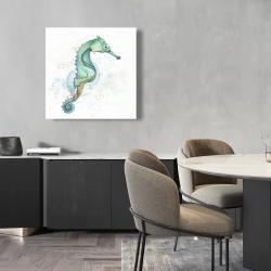 Canvas 24 x 24 - Sea horse
