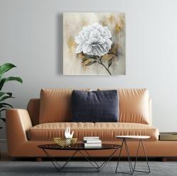 Canvas 24 x 24 - White peony