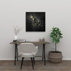 Canvas 24 x 24 - Picard spaniel