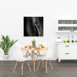 Canvas 24 x 24 - Black horse