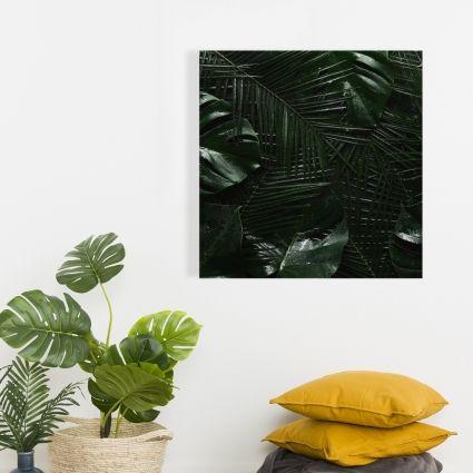 Jungle tropicale
