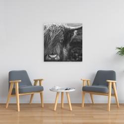Canvas 24 x 24 - Monochrome portrait highland cow
