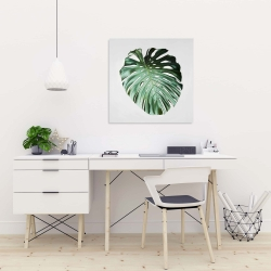 Canvas 24 x 24 - Monstera leaf