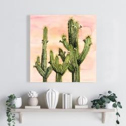 Canvas 24 x 24 - Weberocereus cactus