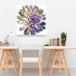 Canvas 24 x 24 - Multicolored succulent
