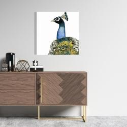 Canvas 24 x 24 - Watercolor peacock