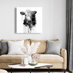 Canvas 24 x 24 - Jersey cow