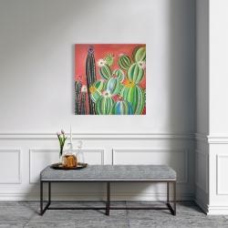 Canvas 24 x 24 - Rainbow cactus