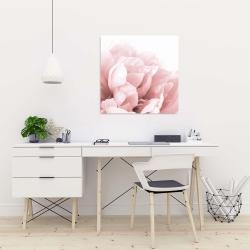 Canvas 24 x 24 - Peony flower dream