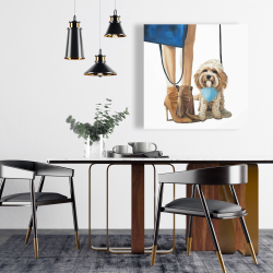 Canvas 24 x 24 - Fashionable cavoodle dog