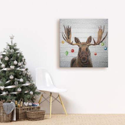 Moose has christmas balls