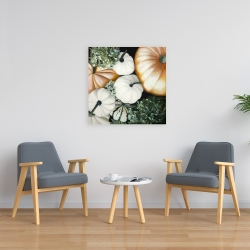 Canvas 24 x 24 - Fall pumpkins