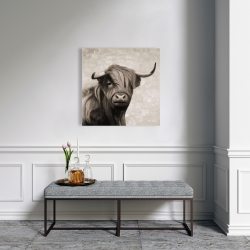 Canvas 24 x 24 - Highland cattle sepia