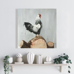 Canvas 24 x 24 - Wyandotte rooster