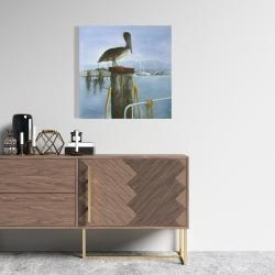 Canvas 24 x 24 - Pelican