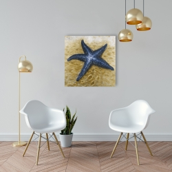 Canvas 24 x 24 - Beautiful starfish