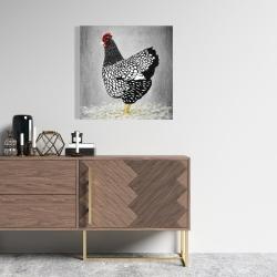 Canvas 24 x 24 - Black and white wyandotte hen