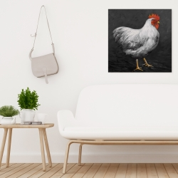 Canvas 24 x 24 - Grey rooster 2