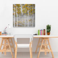 Canvas 24 x 24 - Birch forest