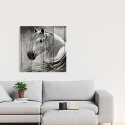 Canvas 24 x 24 - Rustic horse