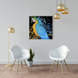 Canvas 24 x 24 - Blue macaw parrot