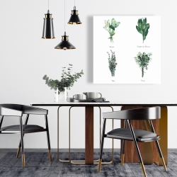 Canvas 24 x 24 - Fines herbes