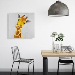 Canvas 24 x 24 - Curious giraffe