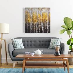 Canvas 24 x 24 - Sunny birch trees