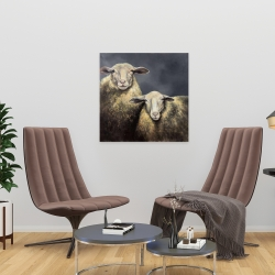 Canvas 24 x 24 - Two sheeps