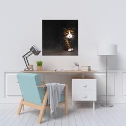 Canvas 24 x 24 - Discreet cat