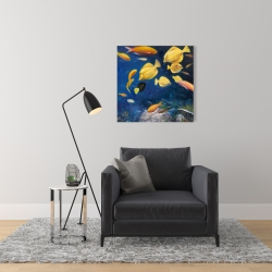 Canvas 24 x 24 - Fish under the sea