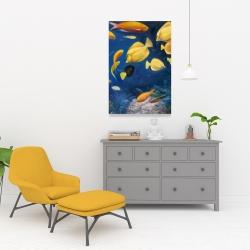 Canvas 24 x 36 - Fish under the sea