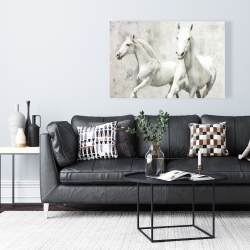 Canvas 24 x 36 - Two white horse running