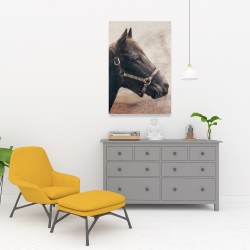Canvas 24 x 36 - Gallopin the brown horse