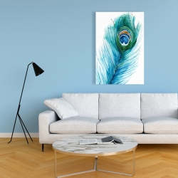Canvas 24 x 36 - Long peacock feather