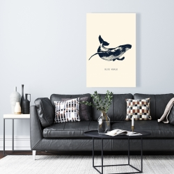 Canvas 24 x 36 - Blue whale sketch