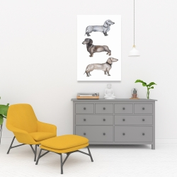 Canvas 24 x 36 - Dachshund dogs