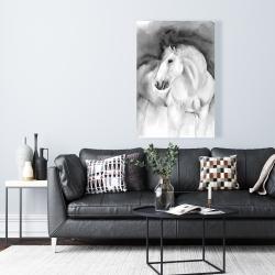 Canvas 24 x 36 - Beauty