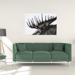 Canvas 24 x 36 - Moose plume