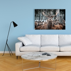 Canvas 24 x 36 - Stags