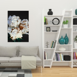 Canvas 24 x 36 - Blooming peonies