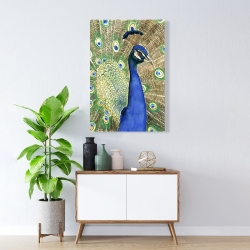 Canvas 24 x 36 - Peacock