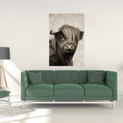 Canvas 24 x 36 - Highland cattle sepia