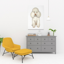 Canvas 24 x 36 - French poodle